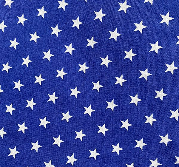 Blue star fabric